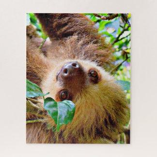 fantastischer Sloth