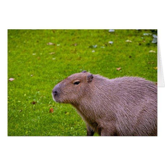 Fantastischer TierCapybara Karte