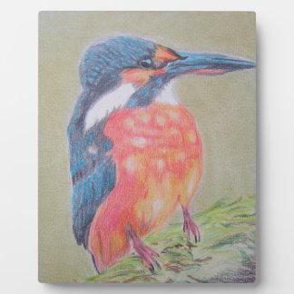 Farbenfroher Eisvogel Fotoplatte