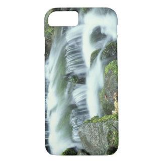 Farn-Frühling, Yosemite Nationalpark iPhone 8/7 Hülle
