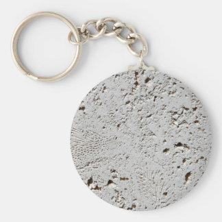 Farn-versteinerte Fliesen-Oberflächen-Nahaufnahme Schlüsselanhänger