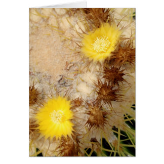 Fass-Kaktus-Blüten Karte