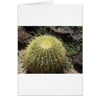Fass-Kaktus Karte