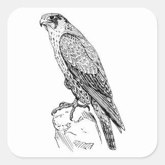 Faucon pérégrin sticker carré