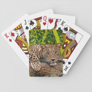 Fauler Leopard Spielkarten