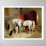 Favourites de prince George (huile sur la toile) Posters
