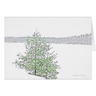 ** Feiertag: Natur: Leben jede Jahreszeit: Walden Karte