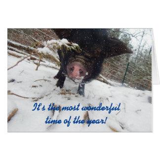 Feiertags-Wünsche, Schwein-Weihnachtskarte Karte