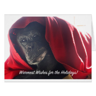 Feiertagsgrußkarte - gerettetes Schimpansebild Riesige Grußkarte