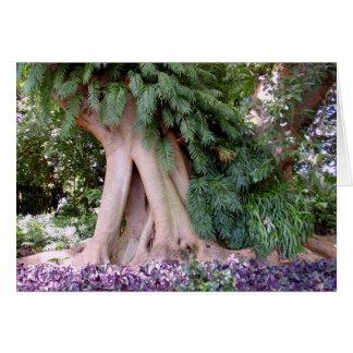 Feigenbaum mit Farnen Karte
