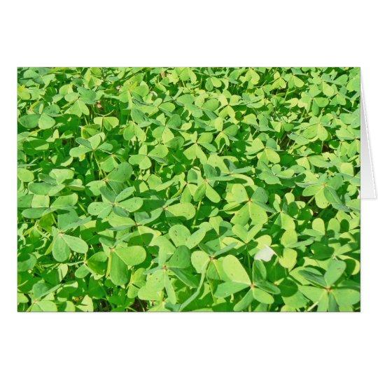 Feld des grünen Klee-Blätter Grußkarte