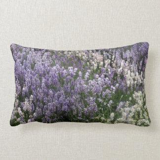 Feld des Lavendel-Kissens Lendenkissen