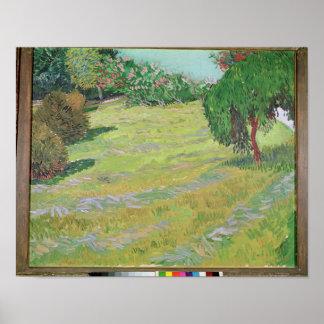 Feld Vincent van Goghs | im Sonnenlicht, 1888 Poster