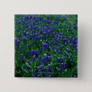 Feld von TexasBluebonnets Quadratischer Button 5,1 Cm