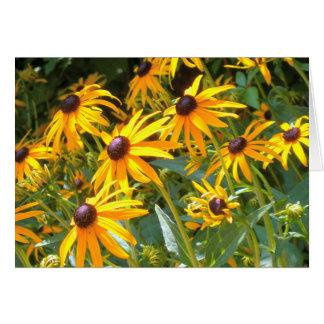 Felder schwarzer mit Augen Susan-Blumen Karte