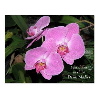 Felicidades Durchmesser de Las Madres Postkarte
