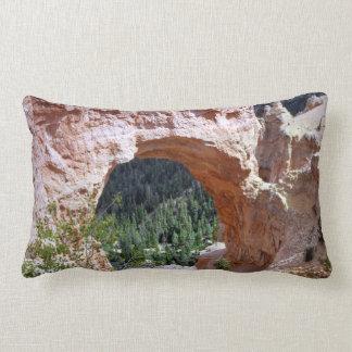 Felsen-Bogen-Schlucht-Wüste Utahs rote südöstlich Kissen