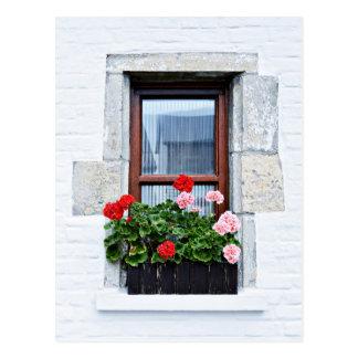 Fenster mit roten Blumen auf weißer Wand Postkarte