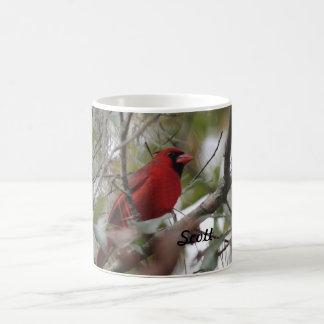 Fertigen Sie Nizza Kardinals-Foto besonders an Kaffeetasse
