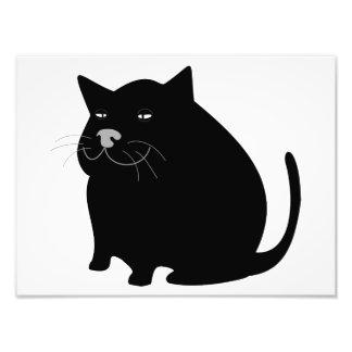 Fette schwarze Katze Fotos