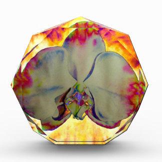 Feuer-Orchidee Auszeichnung