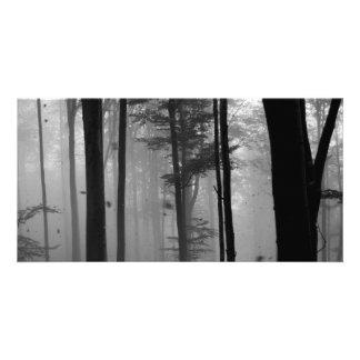 FEUILLE MYSTÉRIEUX B&W D'ARBRES FORESTIERS CARTES DE VŒUX AVEC PHOTO