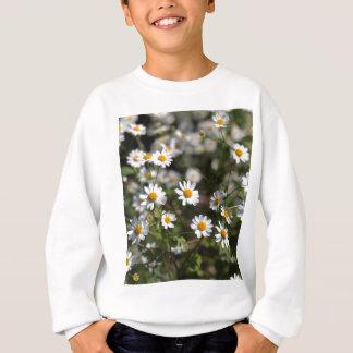 Feverfew Blumen (Tanacetum Parthenium). Sweatshirt