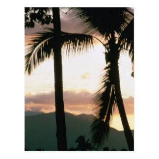 Fidschi-Sonnenuntergang Postkarte