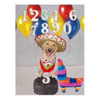 Fiesta-Geburtstags-Party Postkarte