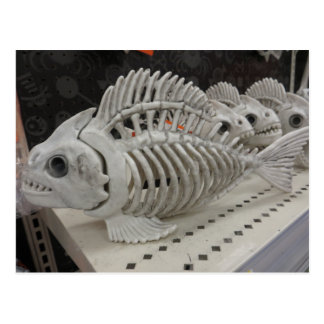 Fisch-Skelett Postkarte