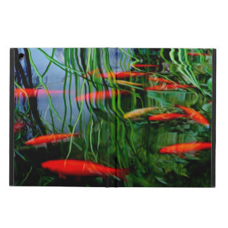 Fisch-Teich