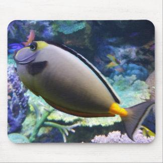 Fische in der AquariumMausunterlage Mauspads