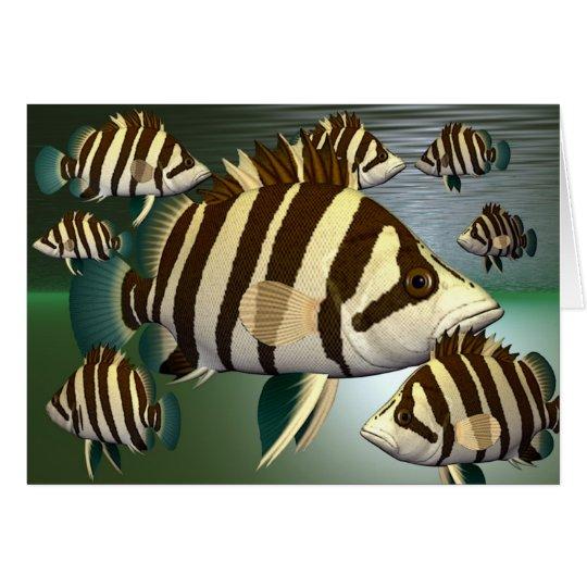 fish3 grußkarte