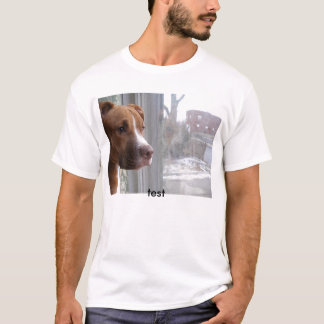 fitbull, Test T-Shirt