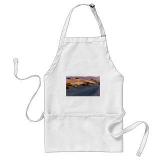Flache Sanddünen des Süßhülsenbaums Death Valley Schürze