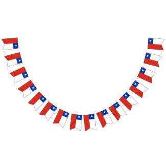 Flagge des Chilen