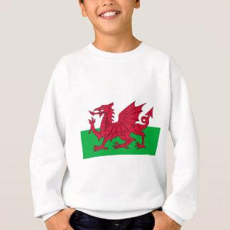 Flagge von Wales - der rote Drache - Baner Cymru Sweatshirt