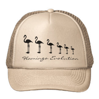 Flamingo-Evolutions-Funky Hut/Kappe Retrokultmützen
