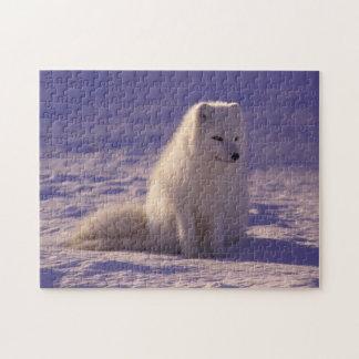 Flaumiges Schneefox-Puzzlespiel