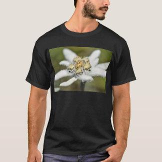 Fleur alpine d'edelweiss t-shirt