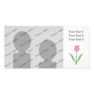 Fleur assez rose de tulipe cartes avec photo