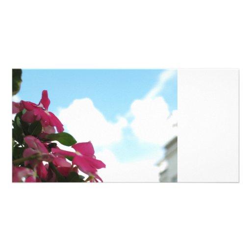 fleur modèle pour photocarte