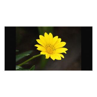 Fleur Cartes Avec Photo
