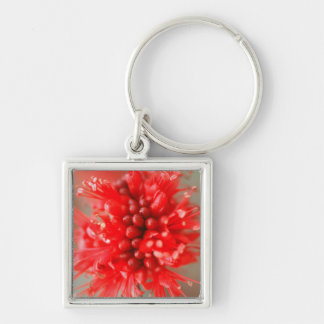 Fleur de Boerbean nain, sables de Sabi Porte-clé Carré Argenté