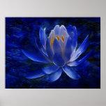 Fleur de Lotus et sa signification Posters