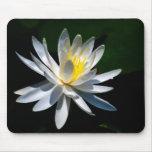 Fleur de Lotus ou nénuphar et signification Tapis De Souris