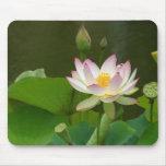 Fleur de Lotus Tapis De Souris