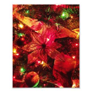 Fleur de Noël Photos D'art