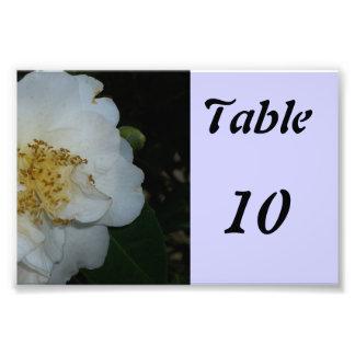 Fleur de nombre de Tableau Photographie