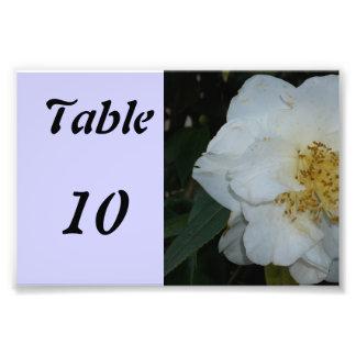 Fleur de nombre de Tableau Tirage Photo